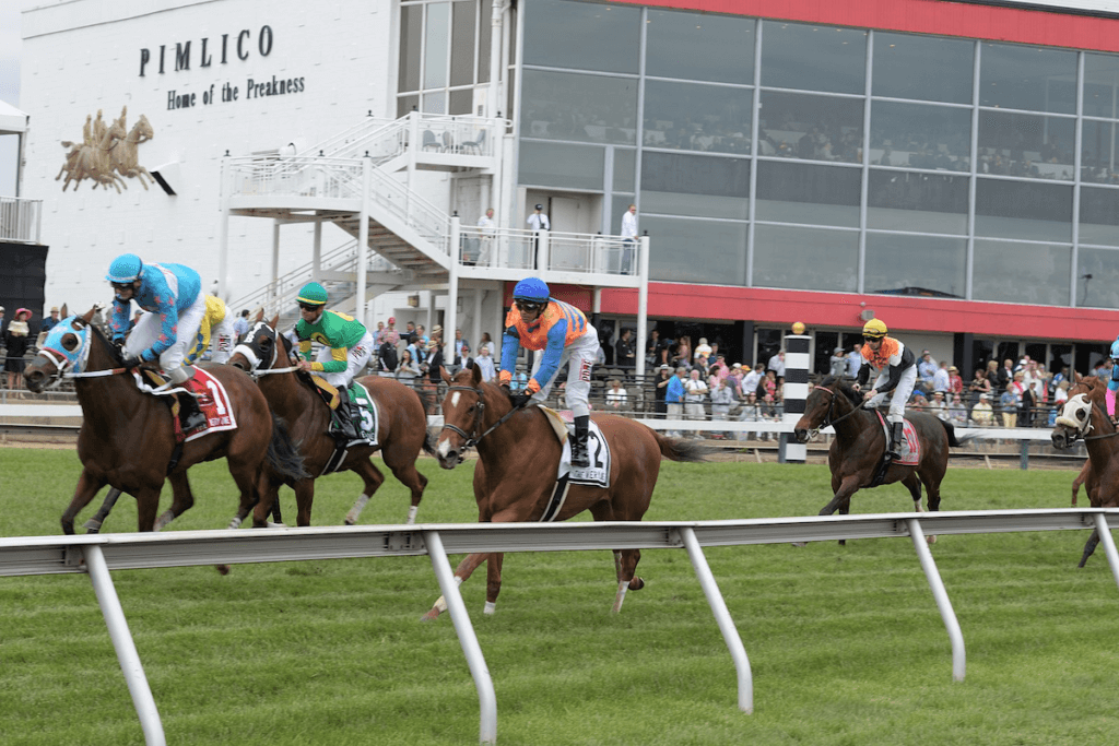 the preakness stakes